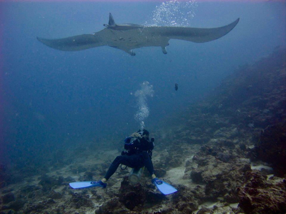 Euro-Divers Meeru Island