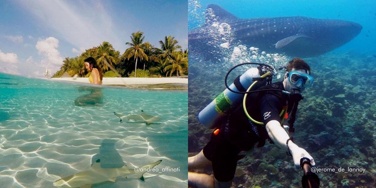 The Maldives' Most Instagrammable Spots - Vilamendhoo Island Resort & Spa
